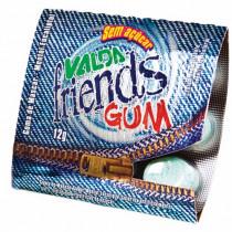 Valda Friends Gum com 12gr